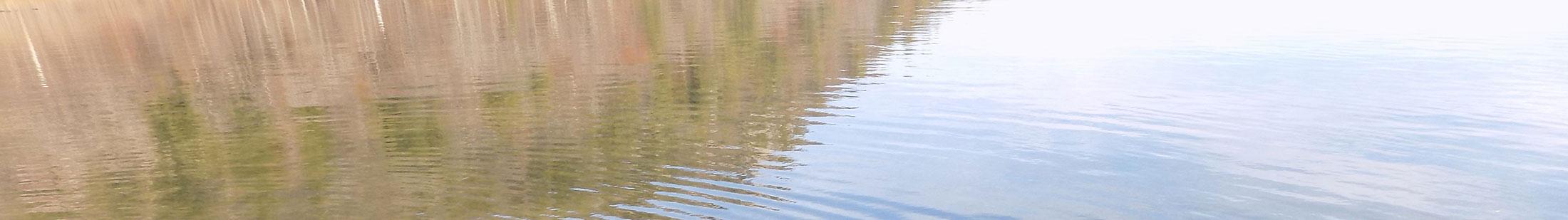 top-banner-water